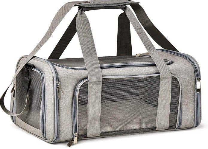 Best Airline Approved Dog Carrier Bags