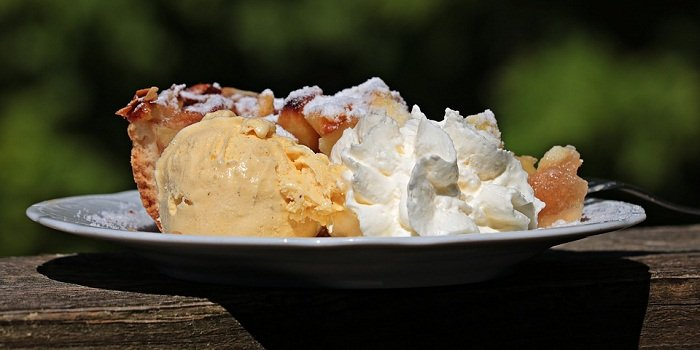 Can Dogs Eat Whipped Cream? Is It Even Safe for Dogs?